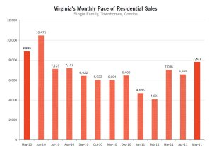 vertical line graph showing sales by month